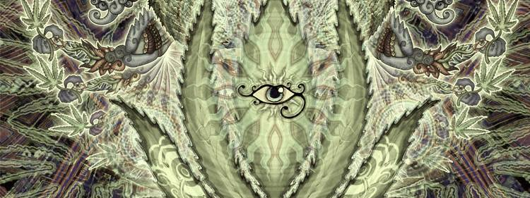 Big-Botanical-Beings_Cannabis-eye_Nemo